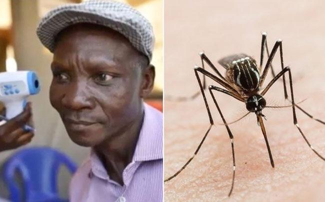 यह आदमी का दावा है कि उसके पाद छह मीटर दूर मच्छरों को मार सकते हैं